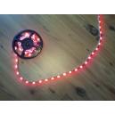 TAŚMA LED 150 SMD 5m Czerwony
